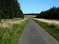 Road to Overmuir - geograph.org.uk - 1345152.jpg