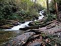 Roaring Fork Falls Black Mountain Campground Pisgah Nat Forest NC 4350 (37947663401).jpg
