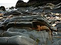 Rocks on beach, Glen Maye - geograph.org.uk - 773611.jpg