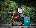 Rodeo in Panama 35.jpg
