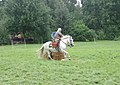Roman Cavalry Reenactment - Roman Festival at Augusta Raurica - August 2013-085.JPG