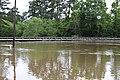 Roman Forest Flooding - 4-18-16 (26241972580).jpg