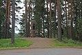 Runeberg's mound 2019 1.jpg