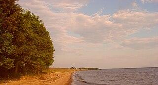 District in Yaroslavl Oblast, Russia