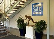 SALK hallen 2009c.jpg