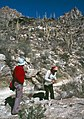 Saguaro National Park-18-1980-gje.jpg