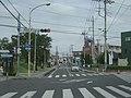 Saitamakendo 85 miyashiro town.JPG