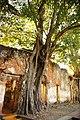 Sala Daeng, Mueang Ang Thong District, Ang Thong 14000, Thailand - panoramio (1).jpg