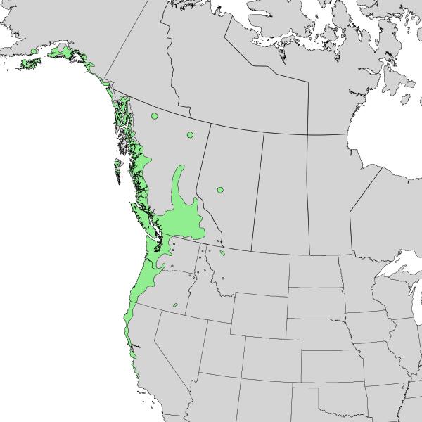 File:Salix sitchensis range map 2.png