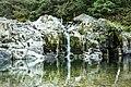 Salmon Falls, Waterfalls, Oregon (32589874781).jpg