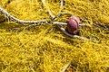 Santorin (GR), Exomytis, Marina Exomitis-Vlychada -- 2017 -- 2805.jpg