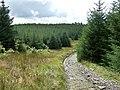 Sarn Helen Roman Road, Hirfynydd - geograph.org.uk - 963804.jpg