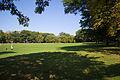 Schenley Park.jpg