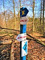 Schoenfels signalisation auto-pédestre (101).jpg