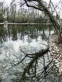 Schwetzingen 29.03.2013 - panoramio (56).jpg