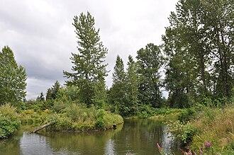Meadowbrook, Seattle - Meadowbrook Pond, July 2009