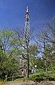 Sendemast (Sender Saalfeld) auf dem Kulmberg 2H1A5876WI.jpg