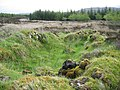 Settlement in Greshornish - geograph.org.uk - 437245.jpg