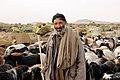 Shepherd (4400217305).jpg