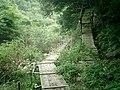 Shin Kobe paths.jpg