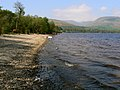 Shore line Loch Lomond - geograph.org.uk - 423016.jpg