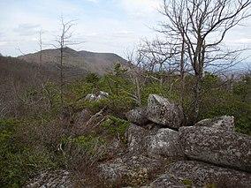 Short Hills Wildlife Management Area March 2017 05.jpg