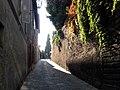 Siena-strada2.jpg