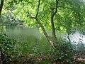 Silent valley national park palakkad file(2426).jpg