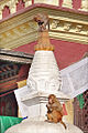 Singe dans lenceinte du Stupa de Swayambhunath (8435318727).jpg