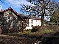 Singleton Park - geograph.org.uk - 1719300.jpg