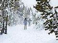 Skiers near Artemisia Geyser (3ee8f2dc-8605-4629-8437-437e07c6fd57).jpg