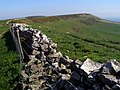 Smedmore Hill to Swyre Head - geograph.org.uk - 769206.jpg