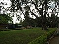 Snap from Lalbagh Flower Show Aug 2013 7844.JPG