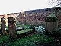 Snowdrops among graves - geograph.org.uk - 685923.jpg