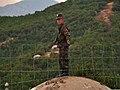 Soldier on Bunker.jpg