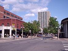 Rua arborizada da cidade, com uma torre de apartamentos com colunas de janelas na extremidade da rua