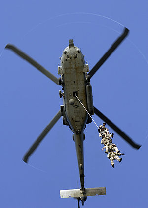 Special Patrol Insertion/Extraction - Image: Special Purpose Insertion Extraction SPIE