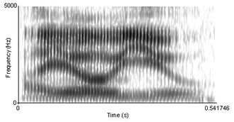 "Speech perception - Figure 2: A spectrogram of the phrase ""I owe you"". There are no clearly distinguishable boundaries between speech sounds."