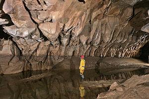 Speleogen - Speleogens in a West Virginia cave