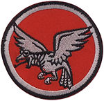Nocturnal Birds of Prey insignia
