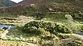 St Elizabeth Copper mine - geograph.org.uk - 1027435.jpg