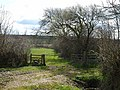 Stile near Soldonmoor - geograph.org.uk - 740991.jpg