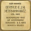 Stolperstein für Gertrud F.J.M. Hermann-Katz (Den Haag).jpg