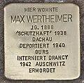 Stolperstein für Max Wertheimer (Heidelberg).jpg