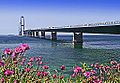 Storebæltsbroen set fra øst.jpg