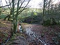 Stream down from Sitch Plantation - geograph.org.uk - 1618008.jpg