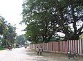 Street around Palani Temple.jpg