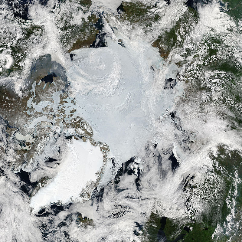 Sunny Skies over the Arctic in Late June 2010.jpg