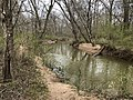 Suwanee Creek, March 2019.jpg