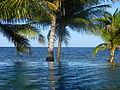 Swimming pool in Belize Laslovarga01.JPG